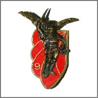 amicale-9-regiment-chasseurs-parachutistes